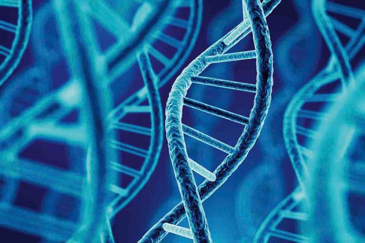 Epilepsie und Genetik